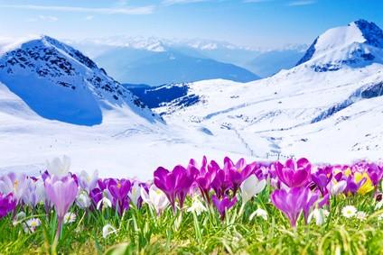 Frühling im Gebirge Reisetipp Allgäu