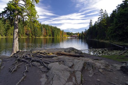 Natursee am Arber - Reisetipp Bayrischer Wald