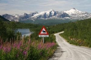 Naturlandschaft - Schweden