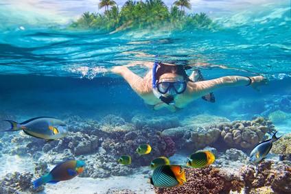 Tauchrevier Malediven - Wo sind die 10 schönsten Tauchreviere der Welt ?