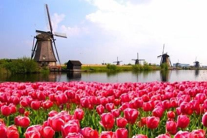 Mühlen von Kinderdijk - Reisetipp Europa
