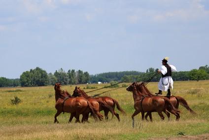 Horse riding Ungarn - Reisetipp Ungarn