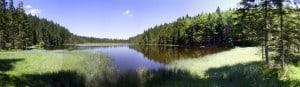 Arbersee, Bayerischer Wald - Die 10 größten Nationalparks Deutschlands