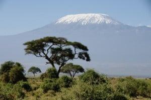 Kilimanjaro Afrika - Die 10 höchsten Berge Afrikas