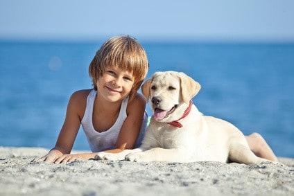 Reiseblog Reisen mit Hund