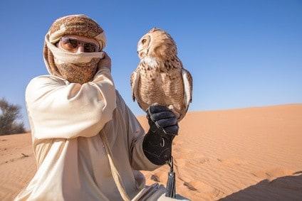 Reiseblogonline-Wuestensafari-Dubai-Falke