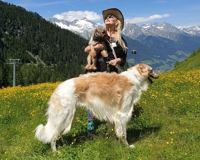 Urlaub mit dem Hund_Italien