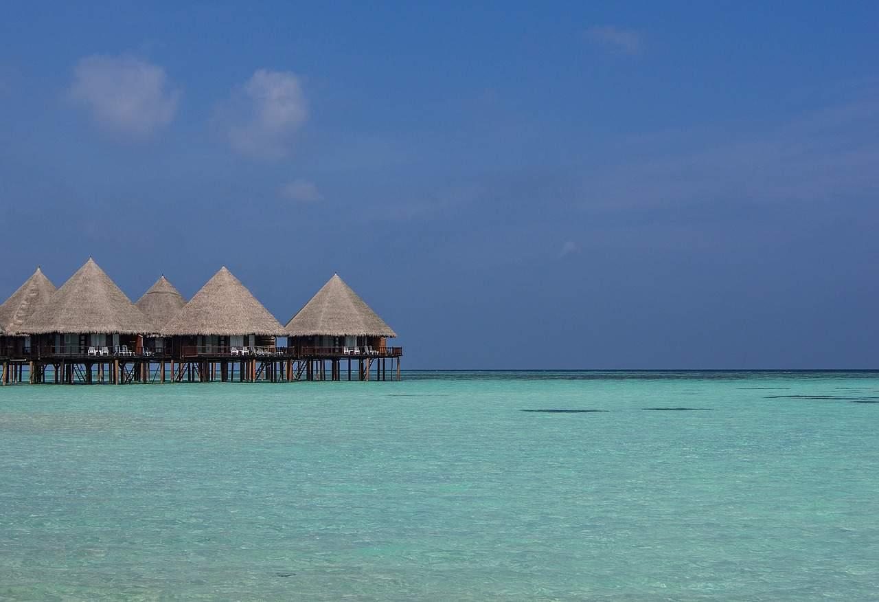 die 10 schönsten Tauchreviere der Welt_Ari-Atoll Malediven